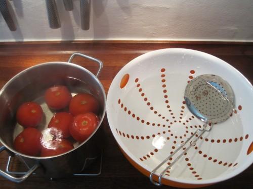 tomatsalsa 003.jpg