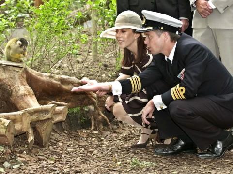 Frederik og Mary hilser på aberne i Odense Zoo