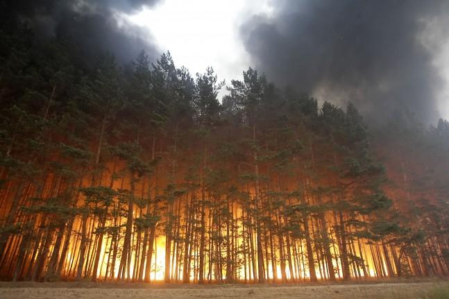 Store skovbrande i rusland griber stadig mere om sig. foto: scanpix