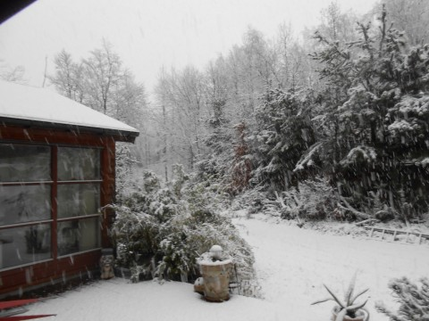 Den føst sne vinter 201415